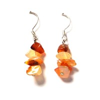 Carnelian Dangling Earrings